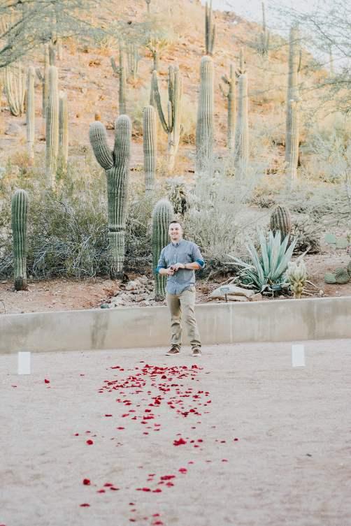 proposal in Arizona