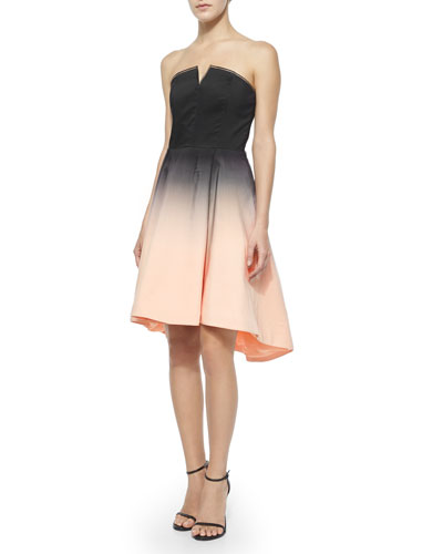Halston Heritage Strapless Structured Ombre Dress