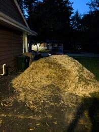 Mulch Pile - Night