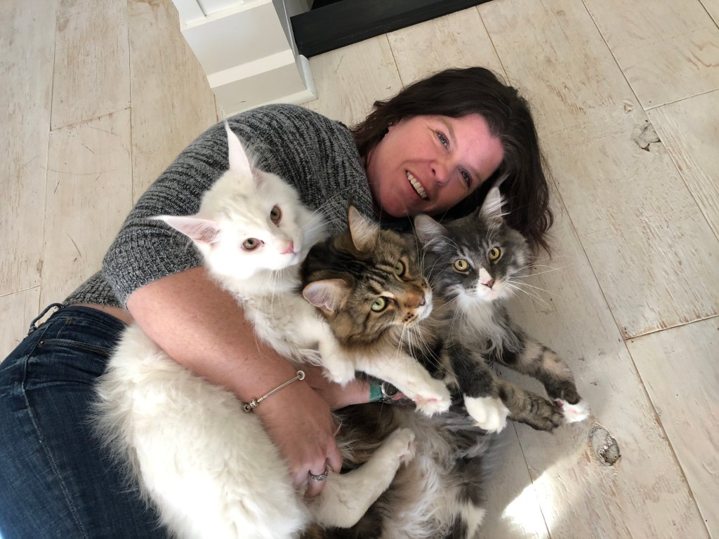Maine-Coon-family