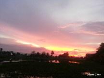 sunset8