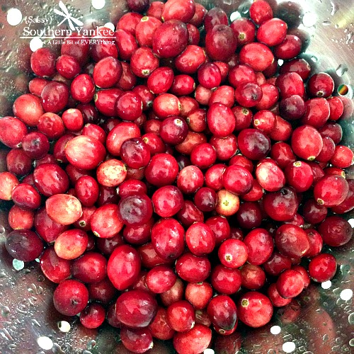 Cranberries from Sassy Southern Yankee