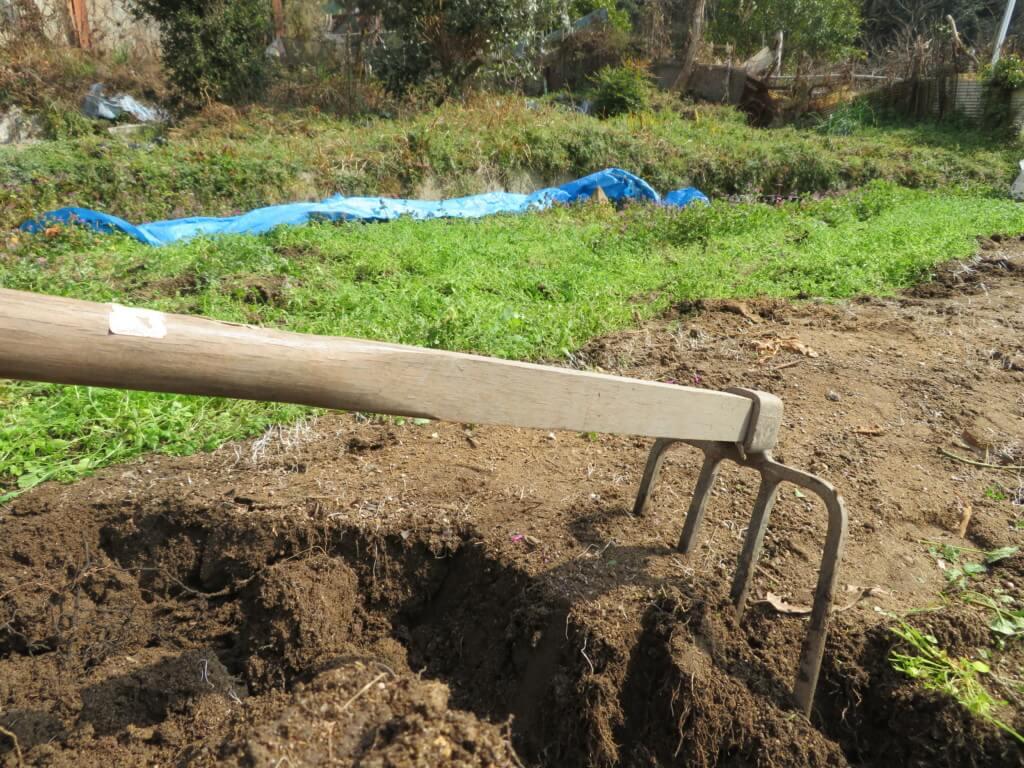 休耕地を耕起してじゃがいも畑にする為、ひたすら鍬で開墾す