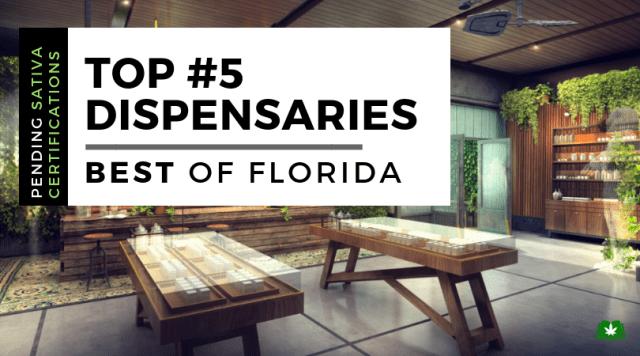 Dispensary in Florida