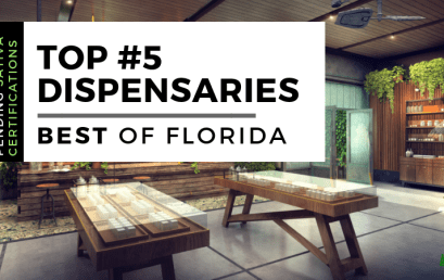Top 5 Best Dispensaries in Florida (Updated Daily)