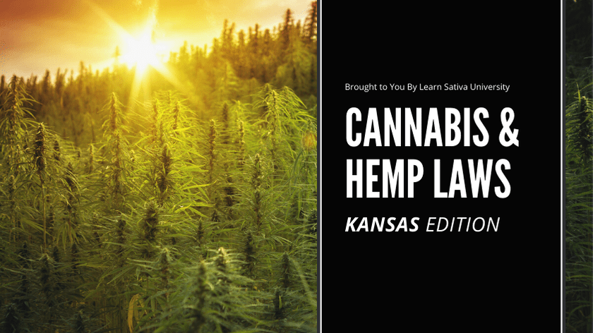 KANSAS MARIJUANA LAWS - CANNABIS & HEMP LAWS
