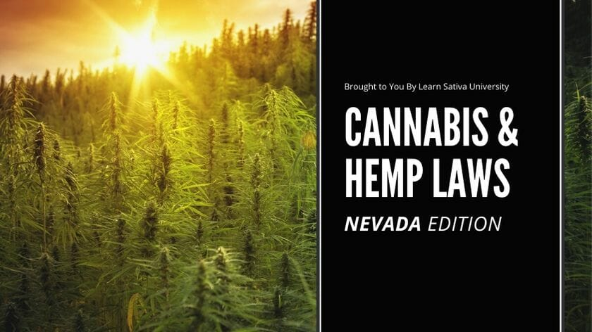 NEVADA MARIJUANA LAWS - CANNABIS & HEMP LAWS (1)