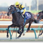 現代の日本だとマイラーよりも中距離馬やステイヤーのほうが種牡馬として成功しやすい