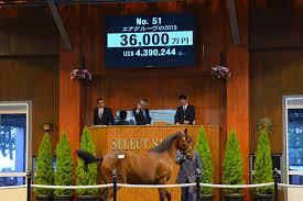 近藤利一が落とした5億8000万の馬名を募集中