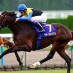 日本史上最強馬は?
