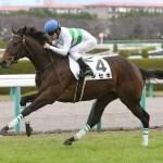 平地(芝2000以上)でオジュウチョウサンに負けそうな現役の重賞勝ち馬