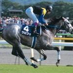 一番強い競馬をしたレースだけ見れば、日本競馬史上最強馬に見える馬