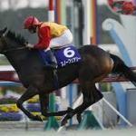 ド肝を抜かれた日本で走った外国馬