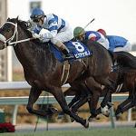 日本競馬史上6番目位に強いスプリンターは