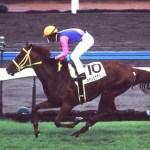 重賞で勝った馬より二着が印象的だった競走馬