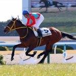 クリンチャー武豊「1周目で馬がゴールだと間違えてかかってしまった」