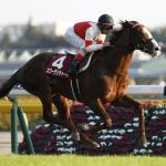 日本歴代No1のスタミナ馬と言えば?