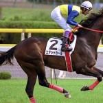 エアシャカールという過小評価された馬