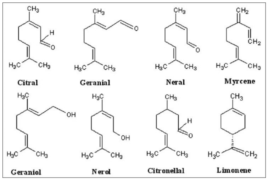 Chemical structure of the major constituents of lemongrass essential oil