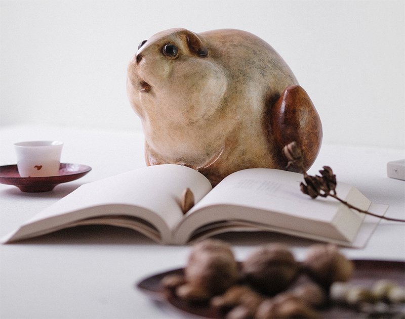 Animal and Book