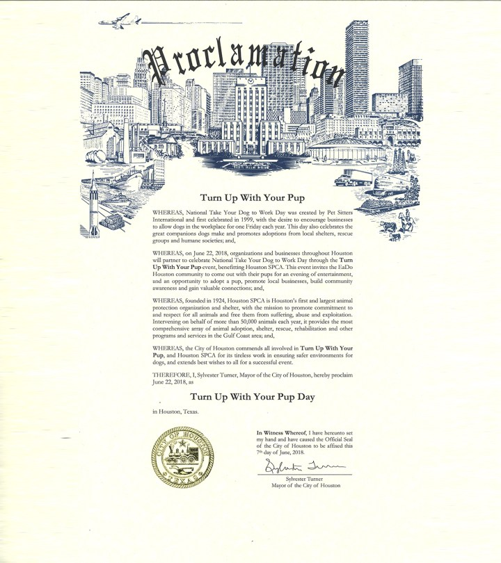 Turn Up With Your City Proclamation