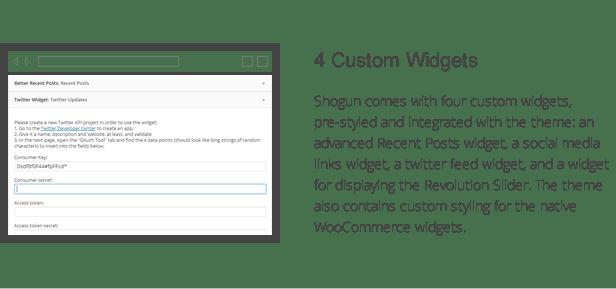 shogun features - 4 custom widgets
