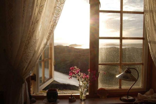 jamur di lemari dapat dicegah dengan membuka jendela