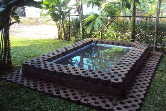 kolam ikan belakang rumah
