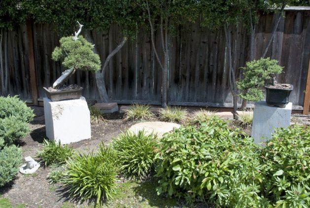 Stone Bonsai Stands