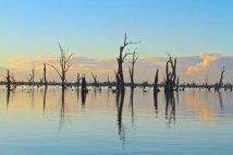 Lake Mulwala, Yarrawonga, Victoria (www.rutherglenvic.com)