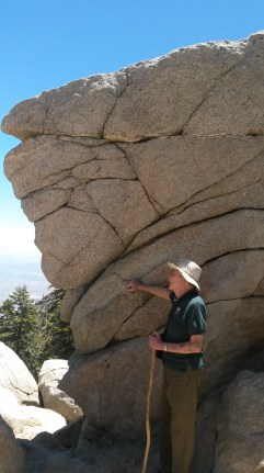 profiles in stone