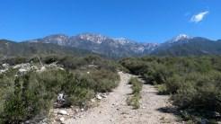 Colonies.Trail