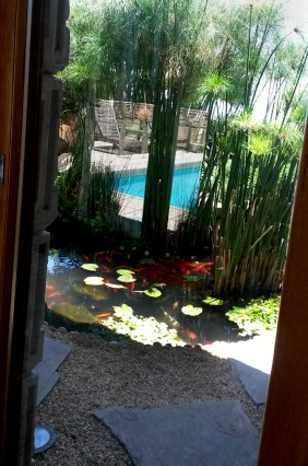 View of a the pond from inside