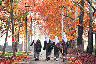 Autumn in Kashmir (3/4)