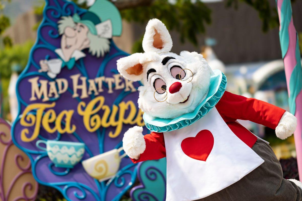 《愛麗絲夢遊仙境》的白兔先生都來了,大家不要迷路啦!
