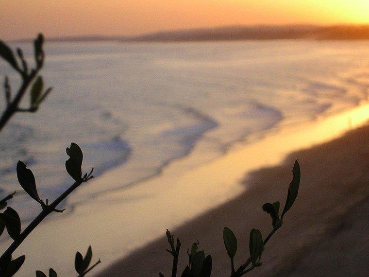 praia-falesia