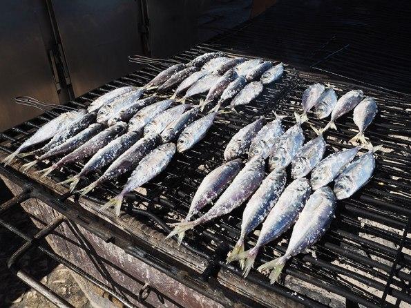 Vis uit Portugal | Saudades de Portugal