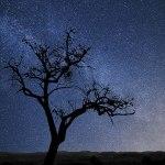De sterrenhemels van de Alentejo