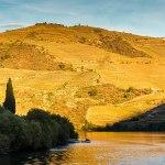 Ode aan de Douro