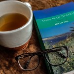 Boek: Thuis in de Algarve