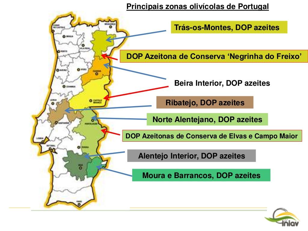 regio's