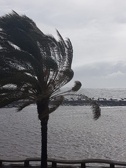 Susanne op Madeira: vertrouwen