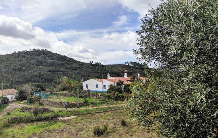 Like a Local | Saudades de Portugal