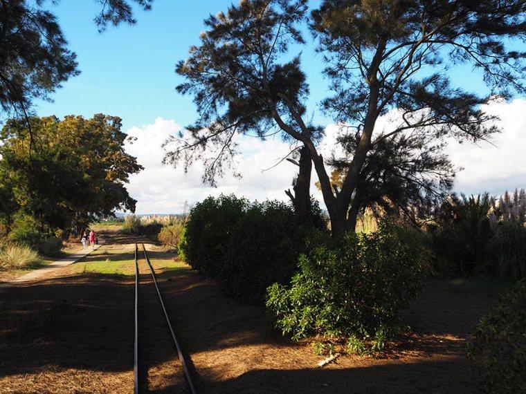 Praia do Barril | Saudades de Portugal