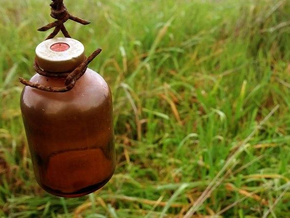 Platteland: Flesje Zonnestralen?   Saudades de Portugal