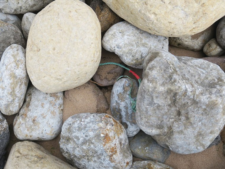 Milou in Mafra: Plasticvrije Portugese kust