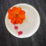 Recept: Amarguinha Sour Cocktail