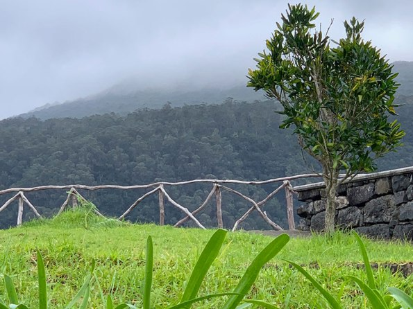 Arco da Calheta: Levada's