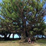 Arco da Calheta: Dagelijkse Dingen