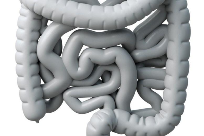 o que causa incontinencia fecal coco sintomas tratamentos